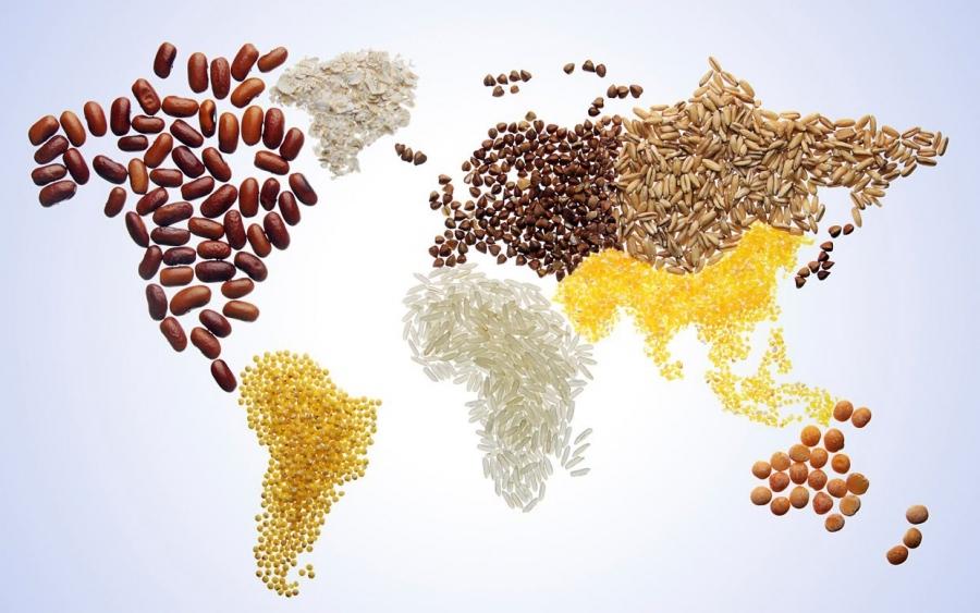 Resultado de imagen para food world